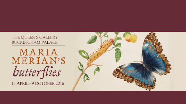 https://www.royalcollection.org.uk/exhibitions/qgbp/maria-merians-butterflies