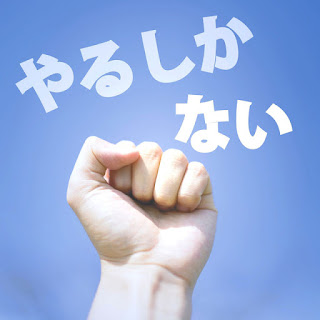 やるしかない-藤田麻衣子-歌詞