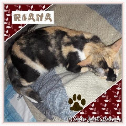 Gatos, Riana