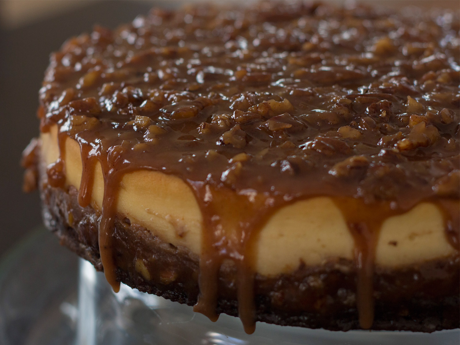 pecan spiced pie cheesecake recipe holiday christmas gingerbread crust