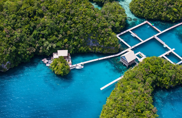 The Pasific Island of Palau