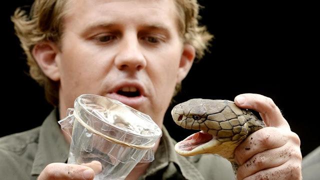 Snake Milker