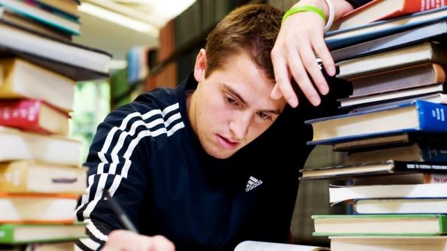 Tip Study Last Minute