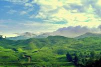 Taman Riung Gunung - Tempat Wisata Di Puncak Bogor