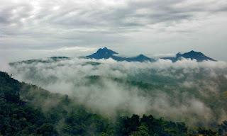 Bukit Jamur Bengkayang 6