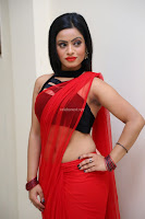 Aasma Syed in Red Saree Sleeveless Black Choli Spicy Pics ~  Exclusive Celebrities Galleries 019.jpg