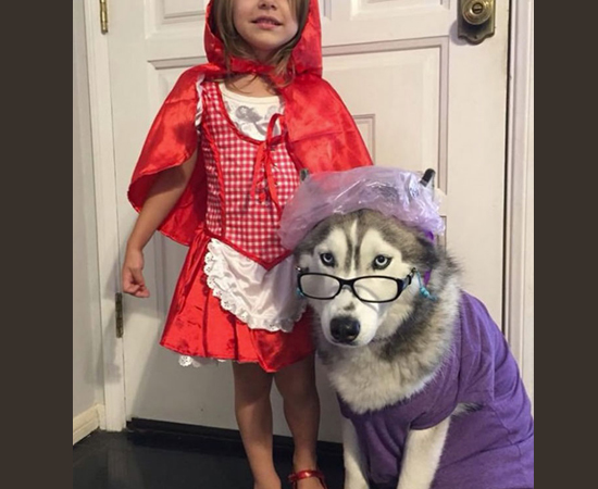 Fantasias Halloween - Chapéuzinho Vermelho e Lobo Mau