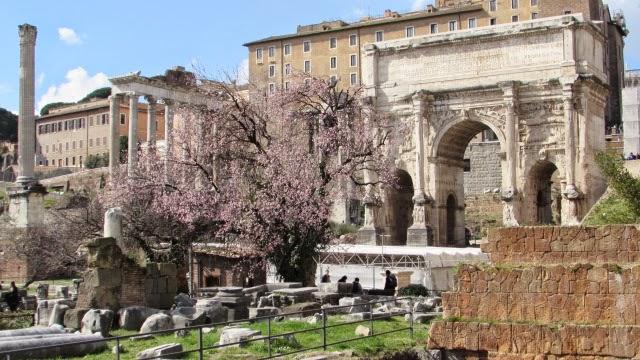 Pallatyn i Forum Romanum