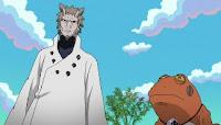 Naruto Shippuuden Episódio 462