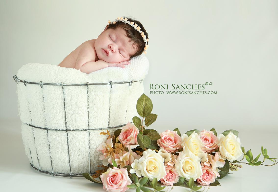 newborn foto de bebê menina recém-nascida em cesto com decoração e tiara