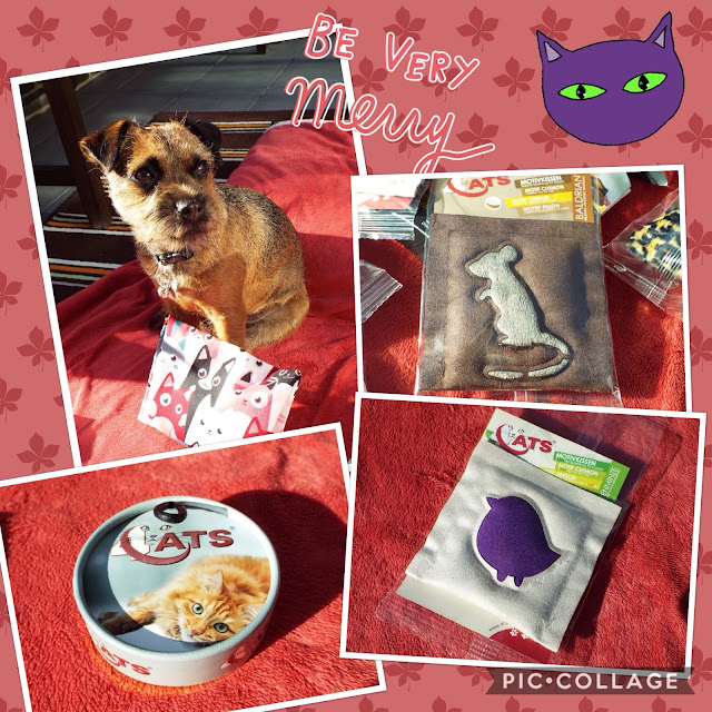 terrier and cat toys