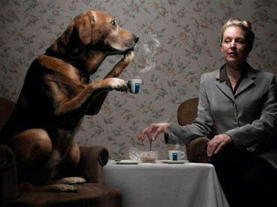 Dog taking a coffee with a woman