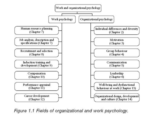 Perbedaan Psikologi Organisasi dan Psikologi Kerja 2_