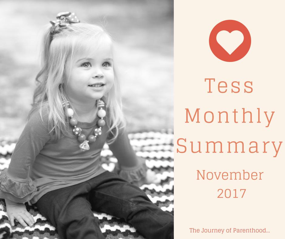 Tess Monthly Summary: November 2017