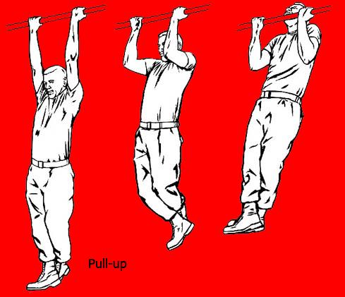 Pull-up (Gantung Angkat Tubuh)