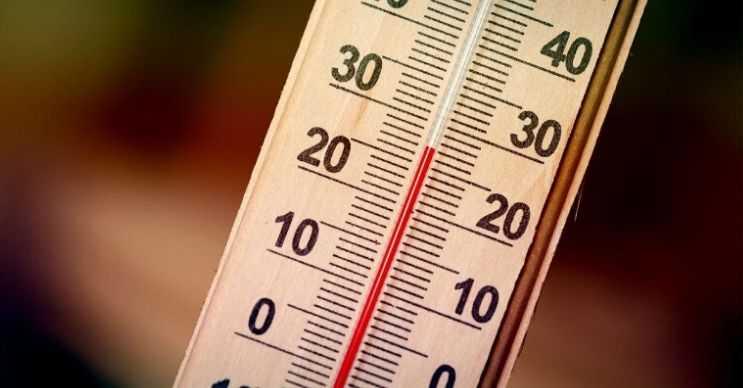 Oda sıcaklığı düşük derecede olursa vücudunuz normalden daha fazla enerji harcayacaktır.