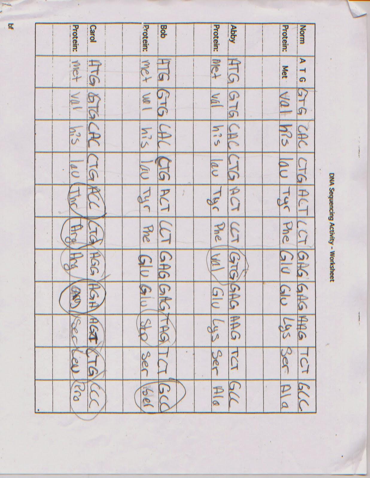 Biology Dna Sequencing Activity Worksheet