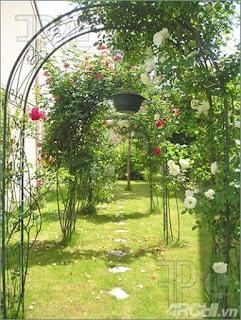 Một vài ý tưởng thiết kế sân vườn 2