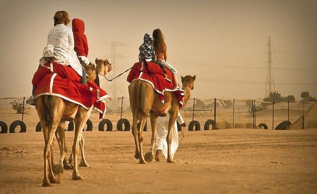 Dubai Camel Safari in the desert