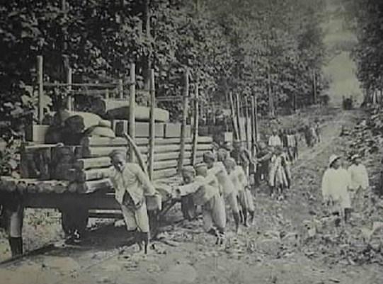 Bentuk Eksploitasi Sumber Alam dan Tenaga Kerja Pada Masa Penjajahan Jepang