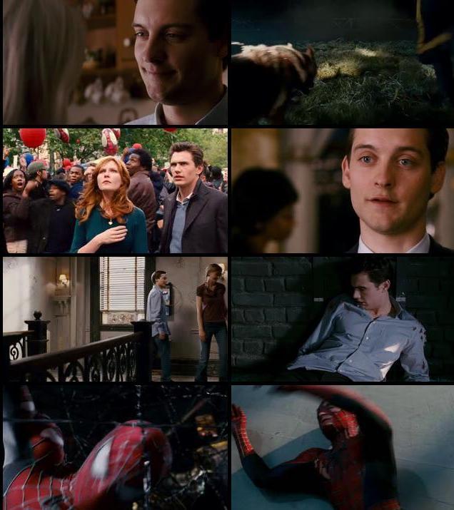 Spider-Man 3 2007 Dual Audio Hindi 480p BluRay