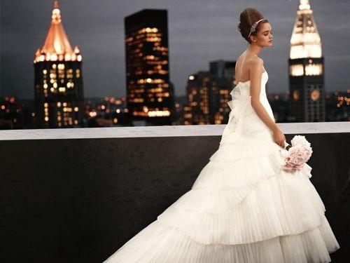 David S Bridal Wedding Gowns: David's Bridal + Vera Wang = WHITE