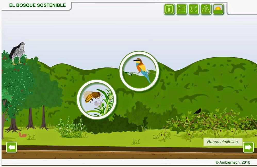 http://www.ambientech.org/spa/animation/el-bosque-sostenible