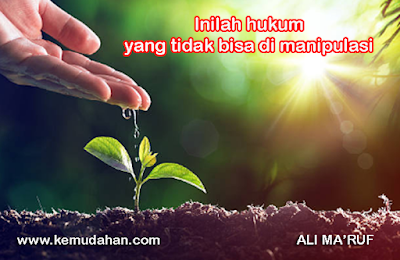 Hukum karma, Hukum sebab akibat, The law of attraction, LOA, Hukum tarik manarik, Ali ma'ruf