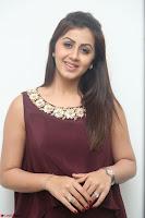Nikki Galrani in a Brown Shining Sleeveless Gown at Nakshatram music launch ~  Exclusive 086.JPG