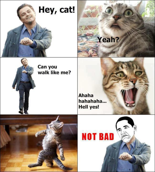 Leonardo Dicaprio Walking Meme