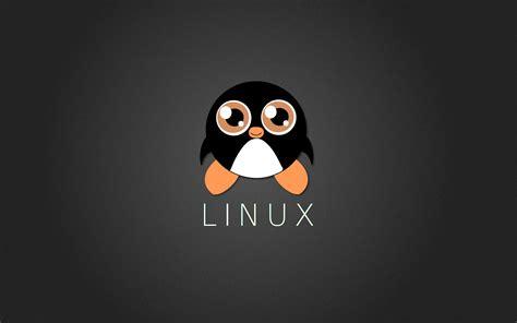 Linux merupakan sistem operasi komputer yang banyak diminati selain windows. Mereka menyediakan banyak fitur dan aplikasi terbaik untuk para pengguna.