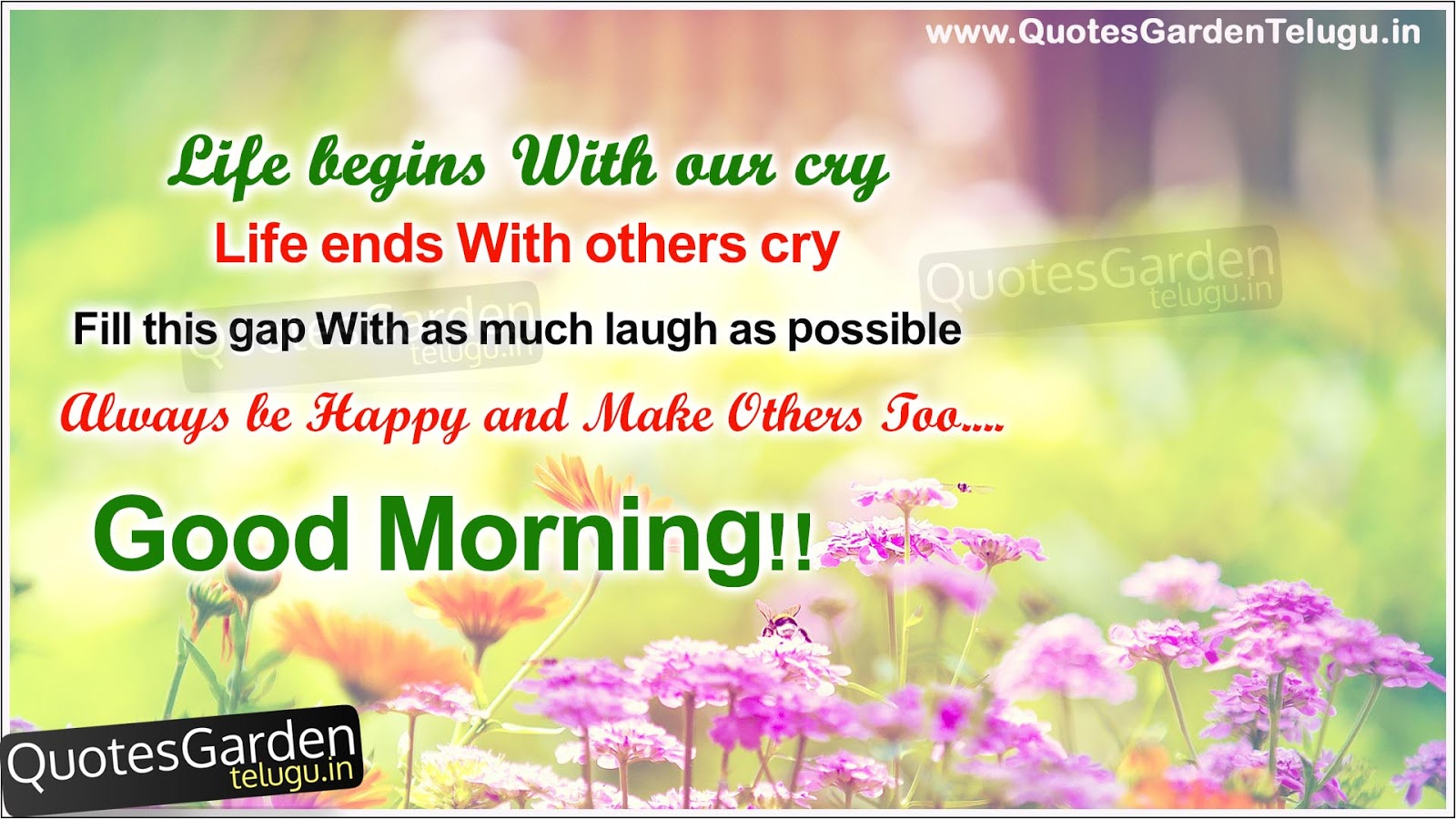 Nice Wallpapers With Quotes About Life In Hindi Good Morning Messages With Nice Hd Wallpapers Quotes