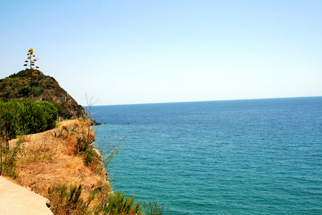 mare, acqua, vegetazione, cielo, Ischia