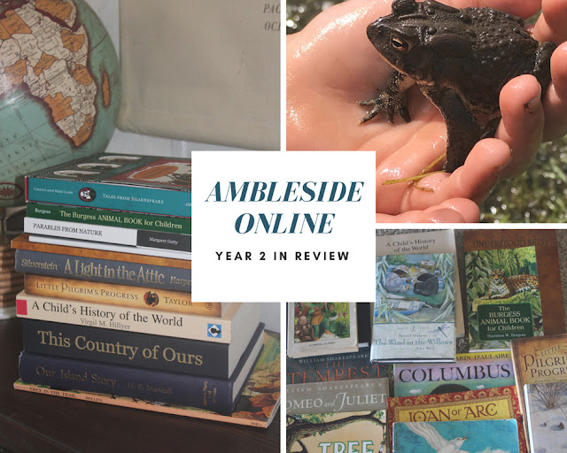 Ambleside Online Year 2 in review