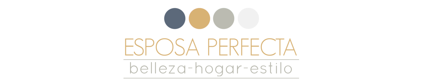 Blog Esposa Perfecta
