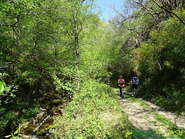 Camino junto al Arroyo de la Braña