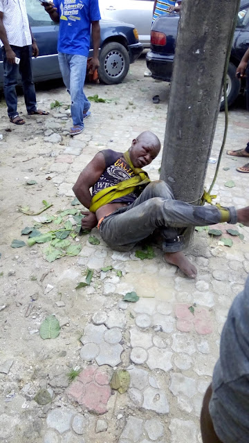 Robber caught at the scene of the crime, tied to pole