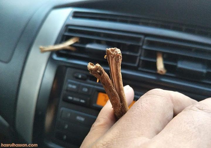 Tangkai yang dapat hilangkan bau durian dalam kereta