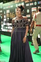 Sanjjanaa Galrani aka Archana Galrani in Maroon Gown beautiful Pics at IIFA Utsavam Awards 2017 47.JPG