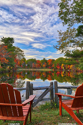 Kingsbury Pond Medfield Massachusetts