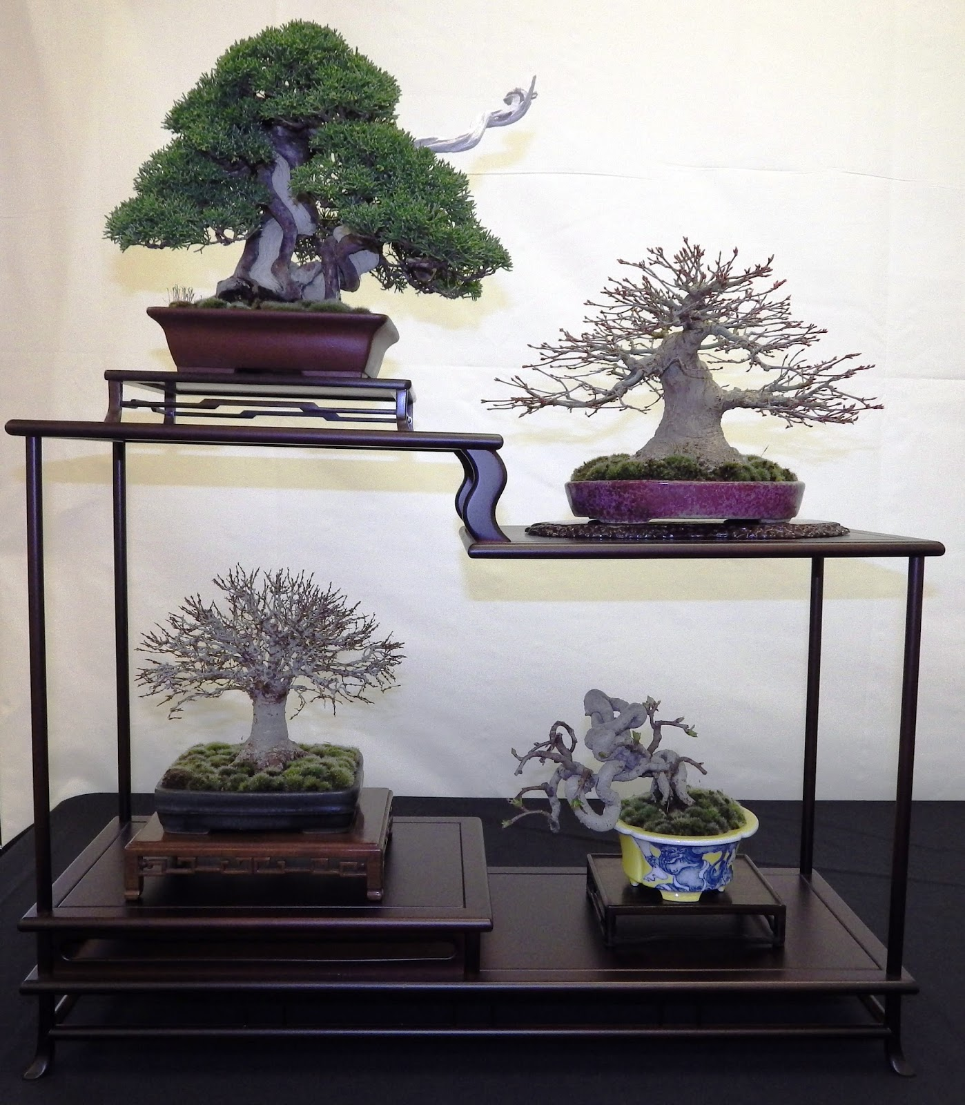 Bespoke Bonsai Stands