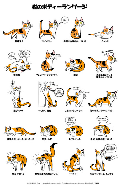 犬や猫の感情がわかる?ボディーランゲージのインフォ【o】 ロサンゼルス在住のイラストレーター、リリー・チン
