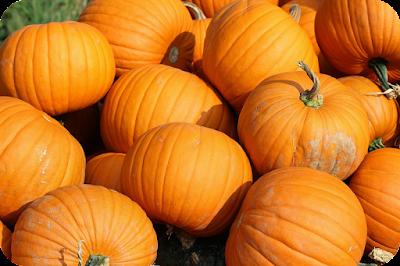 pumpkin superfood
