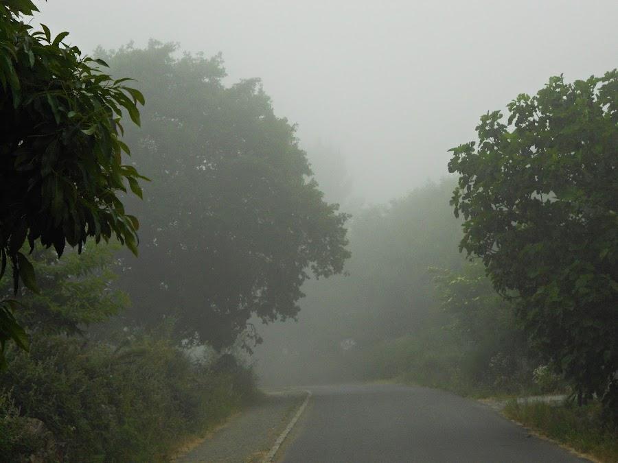 http://lostelaresdesil.blogspot.com/2015/10/camino-de-santiago-airexe-san-xulian-do-camino-camino-frances-albergue-abrigadoiro-lostelaresdesil.html
