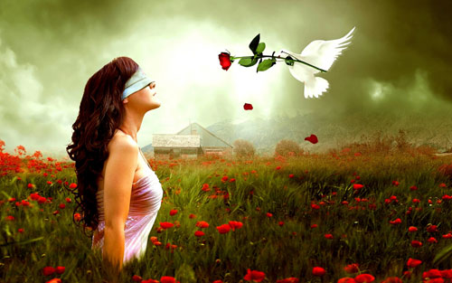 Yêu mù quáng là tốt – Cứ yêu mù quáng đi