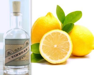 venigar and lemon juice