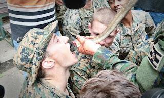 American soldiers - Korean Blood Drinking Snake Cobra Gold Thailand