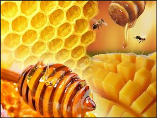 inilah khasiat madu untuk kesehatan
