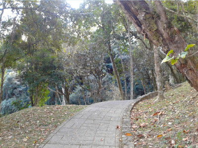 Caminho em bosque próximo ao Paço Municipal de Serra Negra.