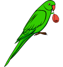 few lines about parrot in Hindi